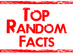 toprandomfacts.com